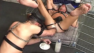 The action goes deeper when the studs head to a NYC dungeon !