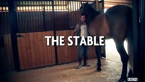 Damien Crosse walks in on David Birdham wasting time in the stables playing with the horses. Sick of David's weak apologies, Damien ties him up and gives him something to be really sorry about – a rough pounding.