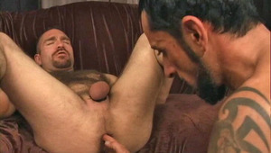 Hairy guys in hardcore oral sex and anal fucking action