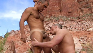 ravishing gay couple want to play with their penises outside